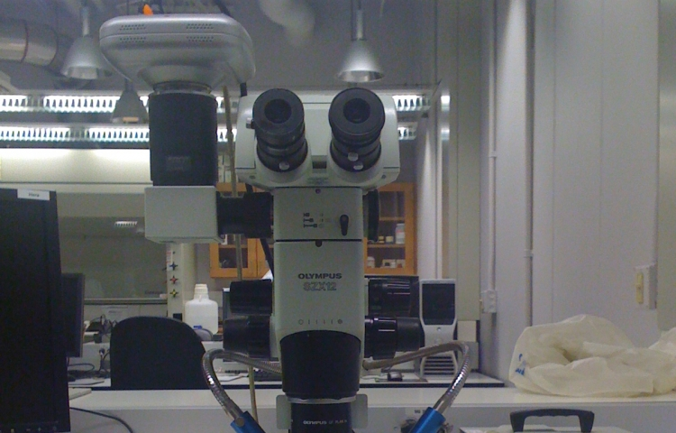 Olympus SZX12 Stereomicroscope